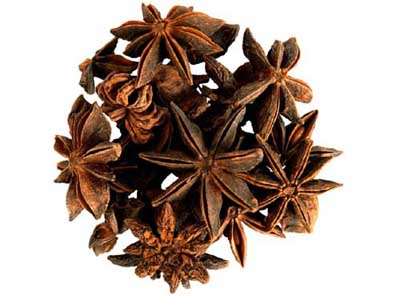 http://alsolespices.com/spring-star-anise/