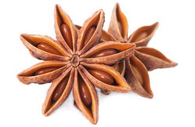 http://alsolespices.com/autumn-star-anise/